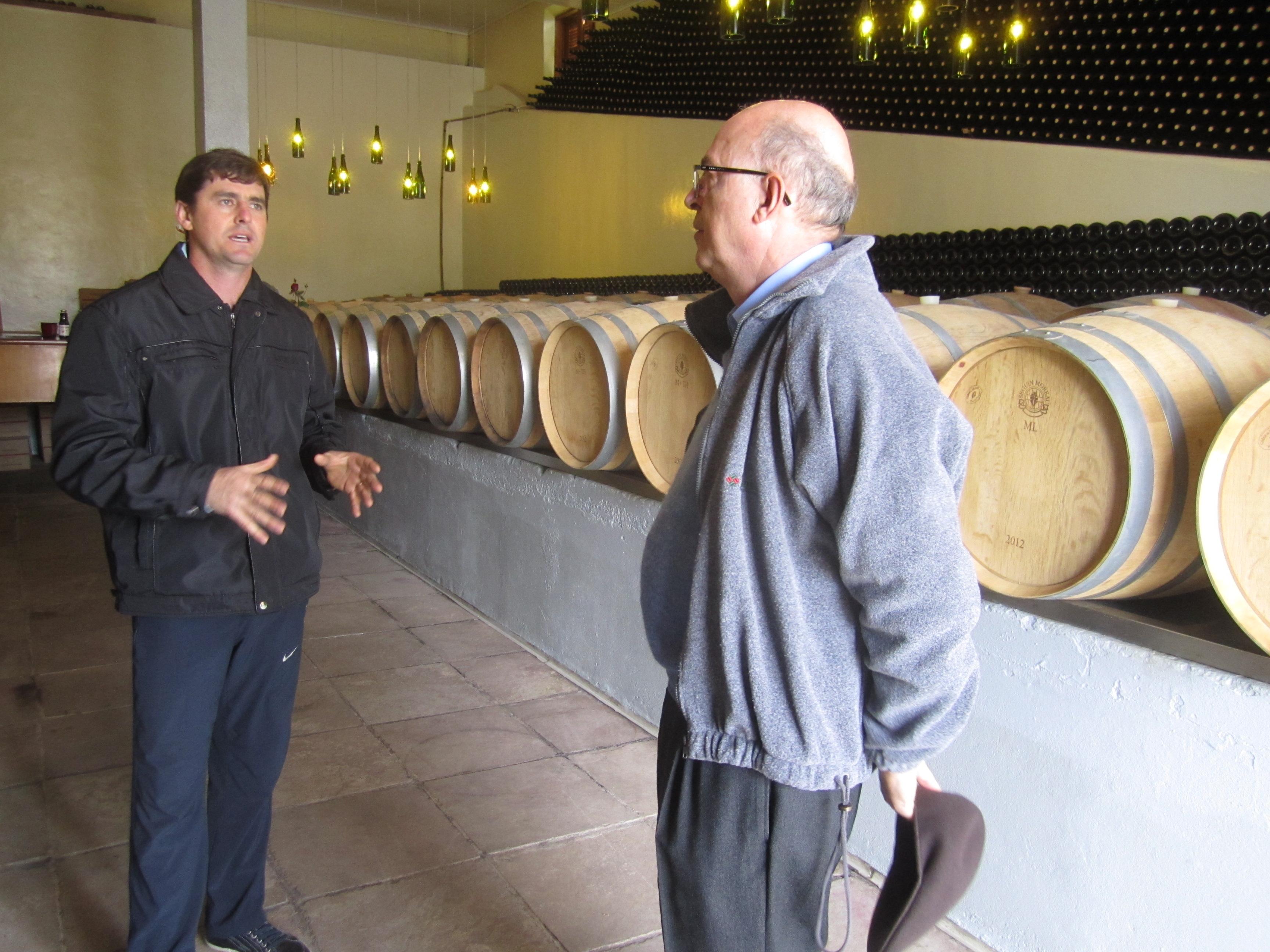 Conhecendo o vinho